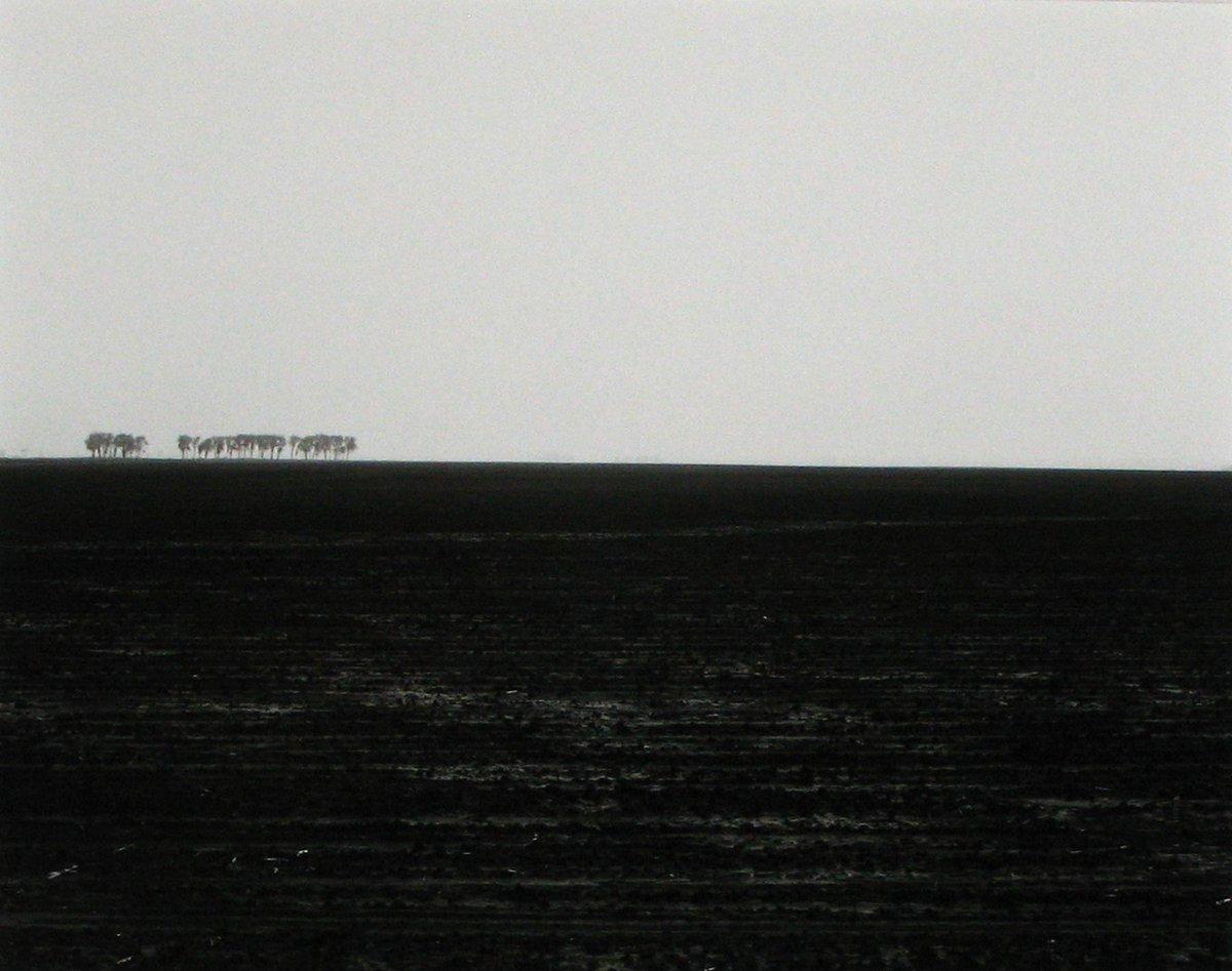 955 • Rhondal McKinney • 1981 #blackandwhite #photograghy  #blackandwhitephotography #landscapephotography