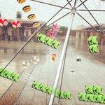 マリオファンにはたまらない?USJで見つけた最高の傘!