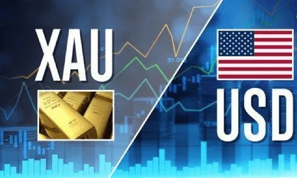 I want to tell my group member that I will send a  #NFP news signal to my group half an hour before #NFP News arrives and I believe these signals will be of great benefit to you today. #pips #cash #technicalanalysis #lifestyle #like #workfromhome #trump #usa #MAGA #america #forex