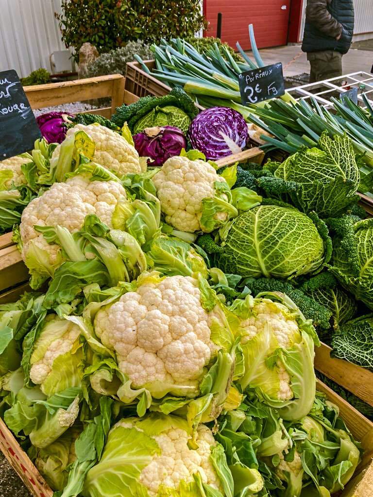 On se retrouve demain matin sur le #Marché des producteurs tous les samedis matin au #CellierdesPrinces avec les beaux légumes de Bernard Jolivet 🥦🥕 #Courthézon #Vaucluse #SaturdayMorning