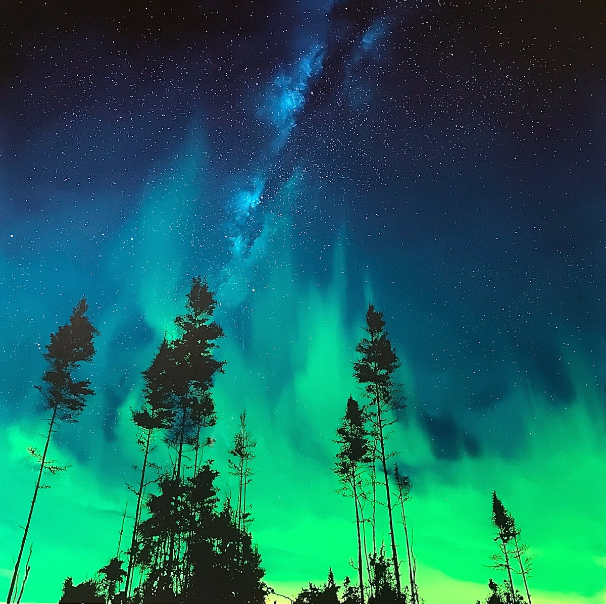 New original piece Iceland inspired 'forever and ever' dramatic Aurora gets me every time...#oilpainting #reversepaintingonglass #landscapeart #auroraborealis #northernlights #aurora #nightsky #stars #milkyway #trees #sunset #sunrise #art #artist #artgallery #castlefineart
