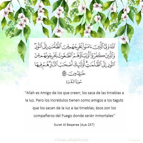 """""""Allah es Amigo de los que creen""""  #Islam #Corán #Citas_inspiradoras #Citas_islámicas #Español #España #México #Colombia #Argentina #Perú #Venezuela #Chile #Paz #Felicidad #cuidado #misericordia"""