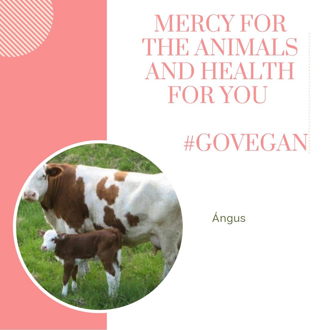 @unaiwind No te los comas.   #Misericordia para los #animales y #salud para ti.   #SeVegano