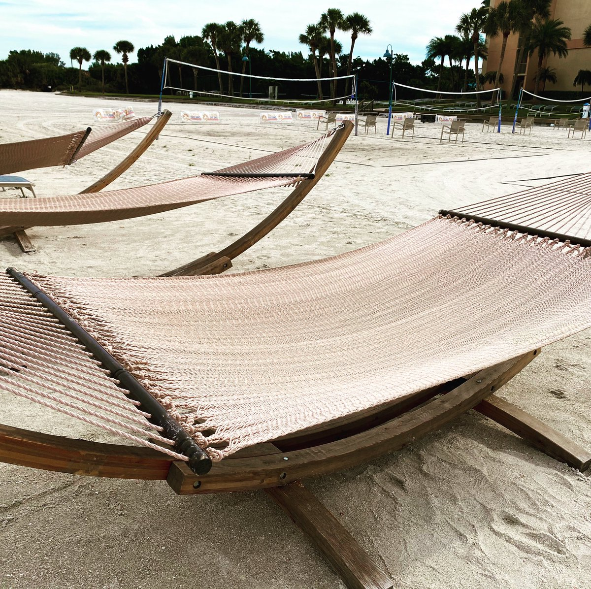 Sheraton Sand Key🌴