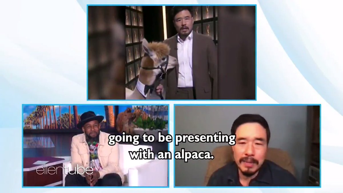 Randall Park doesn't know why there was an alpaca at the Emmys either.