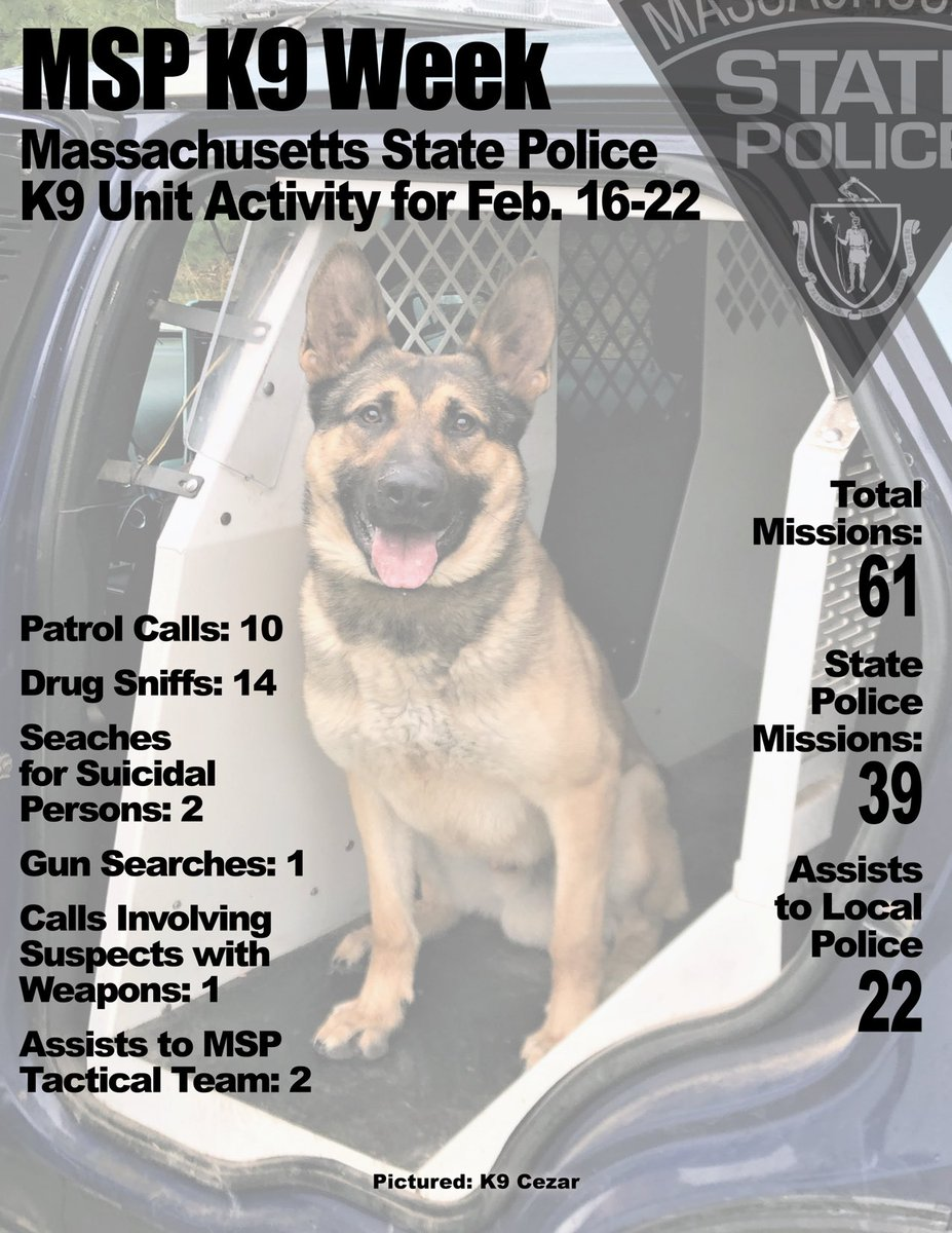 Image posted in Tweet made by Mass State Police on March 5, 2021, 8:40 pm UTC
