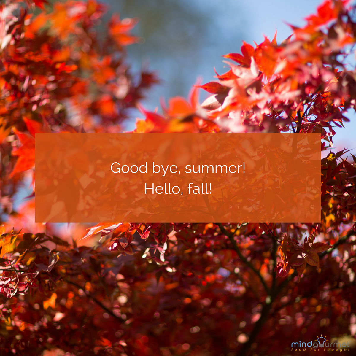 Good bye, summer! Hello, fall! #fall #summer
