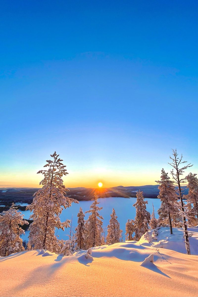 [OC] The sun's brief appearance on a clear morning in the swedish lapland. (2686x4029 pixels)   #nature #beautiful #photography