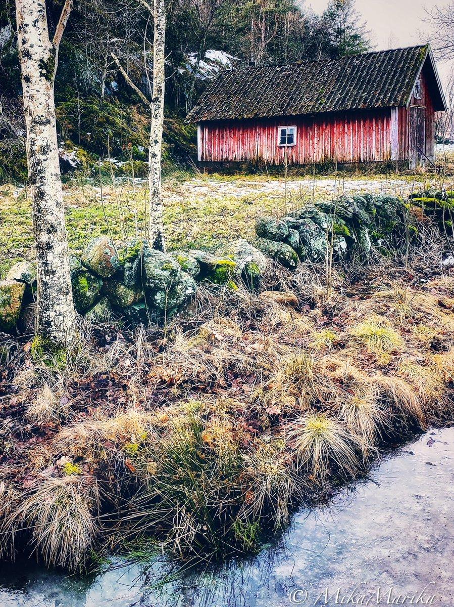 Vinter förvandlas till vår - Winter turns into spring ❄️☀️🌱  #photooftheday #nature #sweden_photolovers #sweden #landscape #countryside #instaskeppet #naturephotography #nature_brilliance #naturelovers #foto #phototherapie #picoftheday #visualart #artofvisuals
