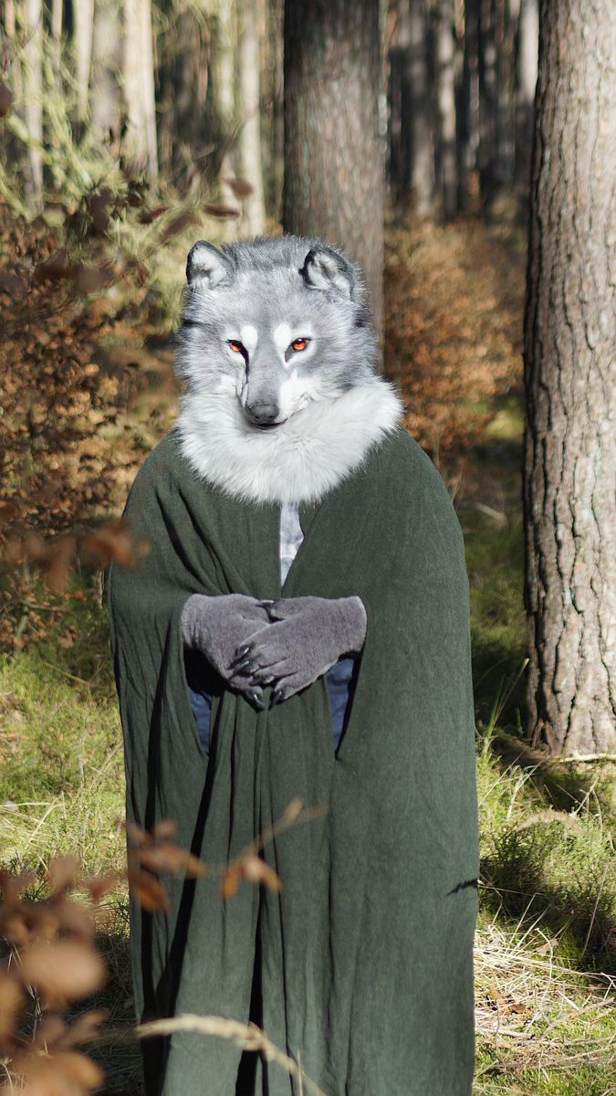 Yesterday I've explored a beautiful forest.   Lobo the wolf created by @Selenovna   late #FursuitFriday