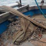 Image for the Tweet beginning: #notizie #sicilia Pescatore di Isola delle