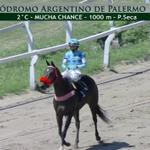 Image for the Tweet beginning: 🇦🇷Sigue la jornada de carreras