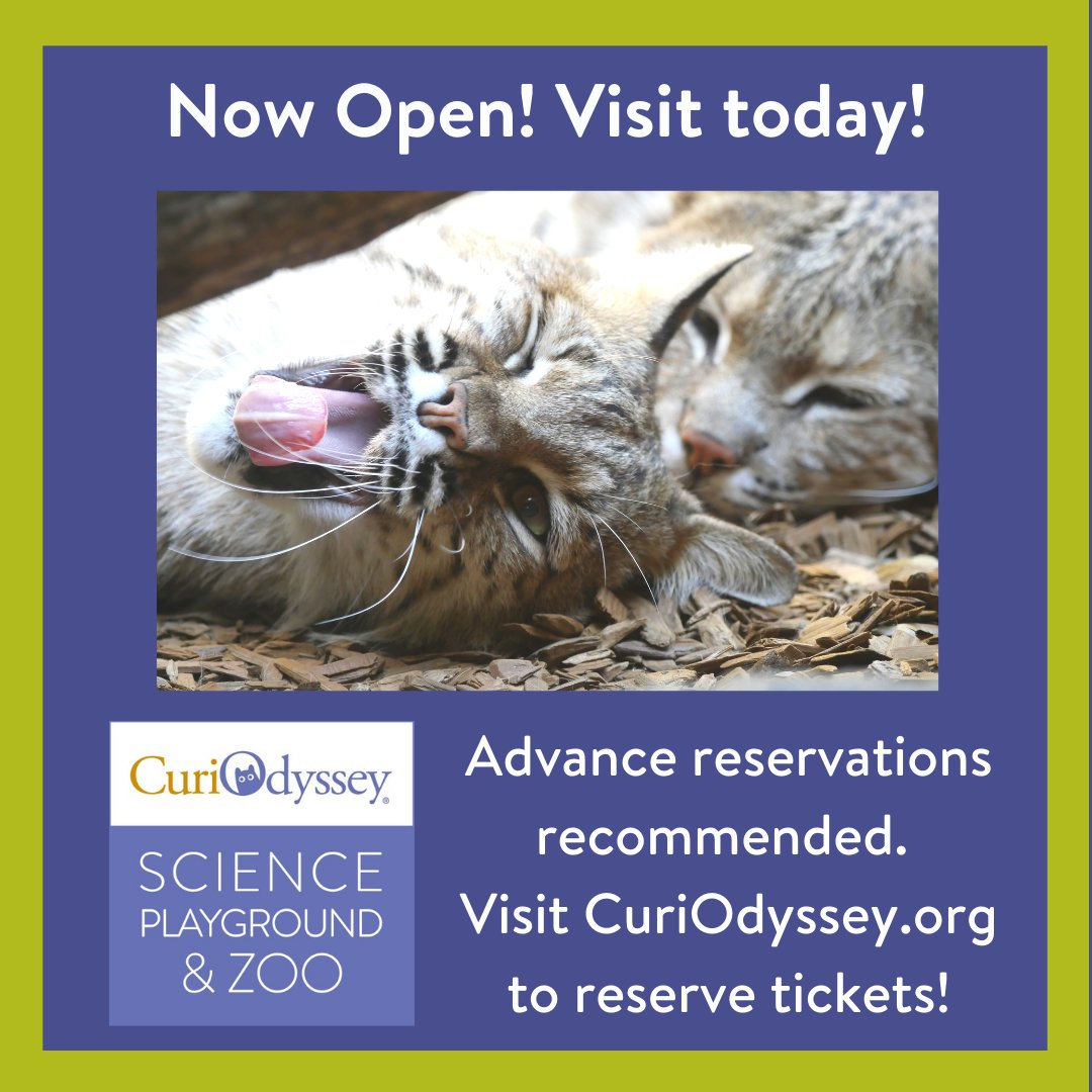 CuriOdyssey is open! Come say hello to Frankie and Caro, they missed you!🐆 Book your tickets online at:    #nonprofits #STEM #education #earlylearning