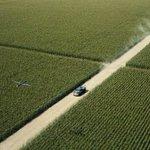 CGを使いたくなかったクリストファーノーラン監督…超広大なトウモロコシ畑を育ててしまう!