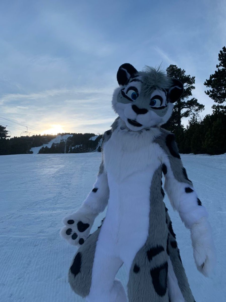 The sun is falling down, it's going to be cold soon ! Here is a snep to warm yourself ☺️  Here is a late #FursuitFriday !