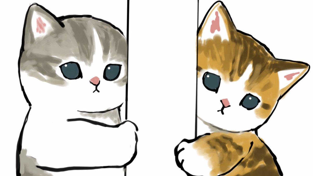 家猫は見た