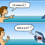 Image for the Tweet beginning: SHAAARK!  Here's a good