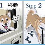 これもあなたのためですw愛犬の狂犬病予防接種の一連の流れが可愛すぎ!