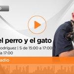Image for the Tweet beginning: 🔴 #ENDIRECTO Comienza @CPG_radio con