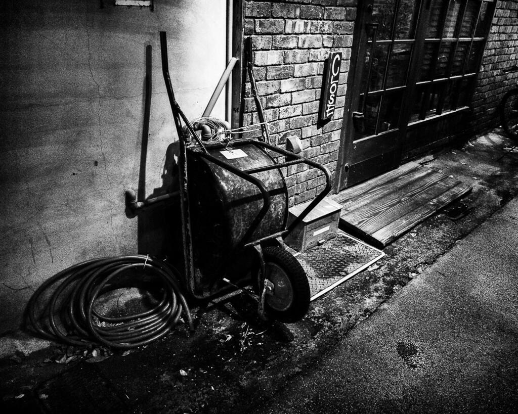 一輪。高知市。 #夜 #night #street #ig_japan #monochrome #blackandwhite #シロクロ #xiaomi #note10lite #写真好きな人と繋がりたい #写真撮ってる人と繋がりたい