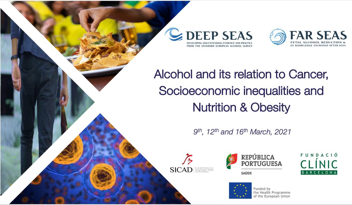 Getting ready for the start of the 2nd DEEP SEAS Thematic Workshop on 'Alcohol and its relation to Cancer Socioeconomic inequalities, and Nutrition & Obesity'