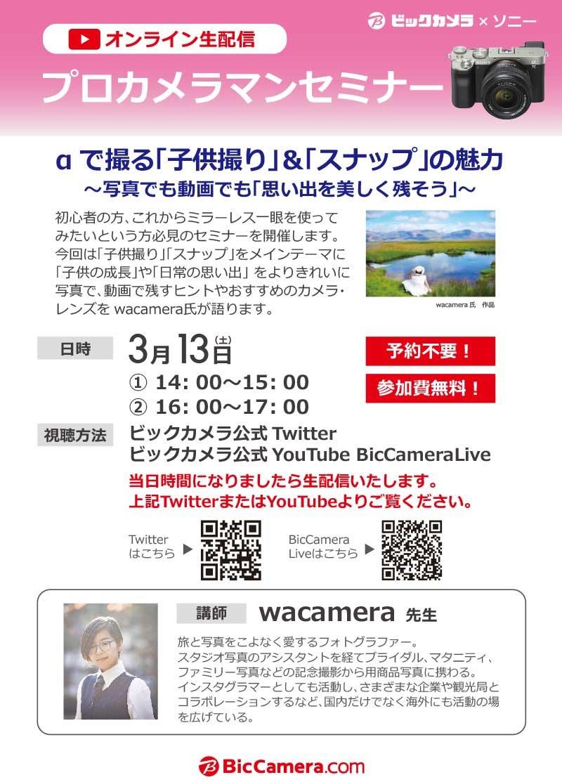 オンライン ビッグ カメラ ヨドバシ・ビッグカメラの電気屋で機種変更メリット・デメリットは?|ドコモ・au・ソフトバンクiphone・スマホ最新・お得情報