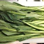 小松菜が食卓で大活躍!生のまま冷凍できる&凍ったまま使える万能食材として注目!