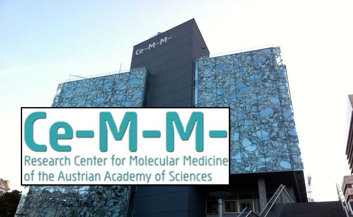 CeMM International Postdoc Program at CeMM Research Center, Vienna