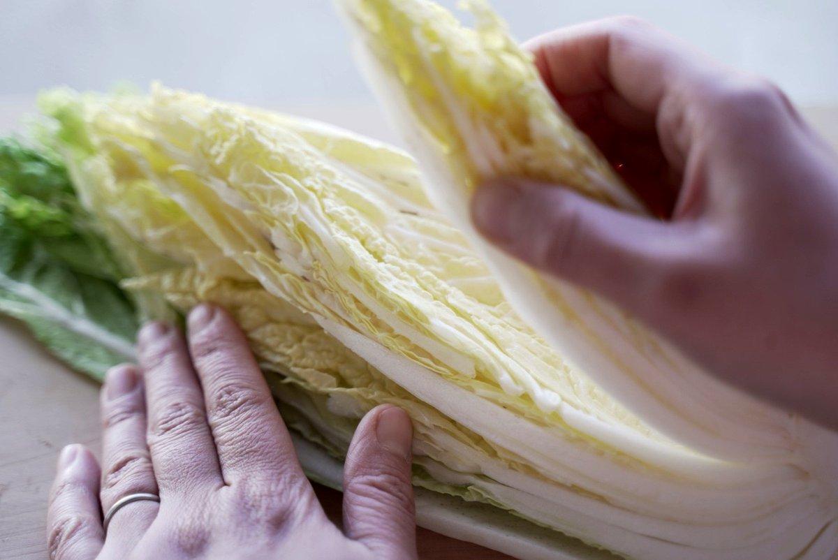 こんな裏技があったなんて!カットした白菜の鮮度を長持ちする方法!