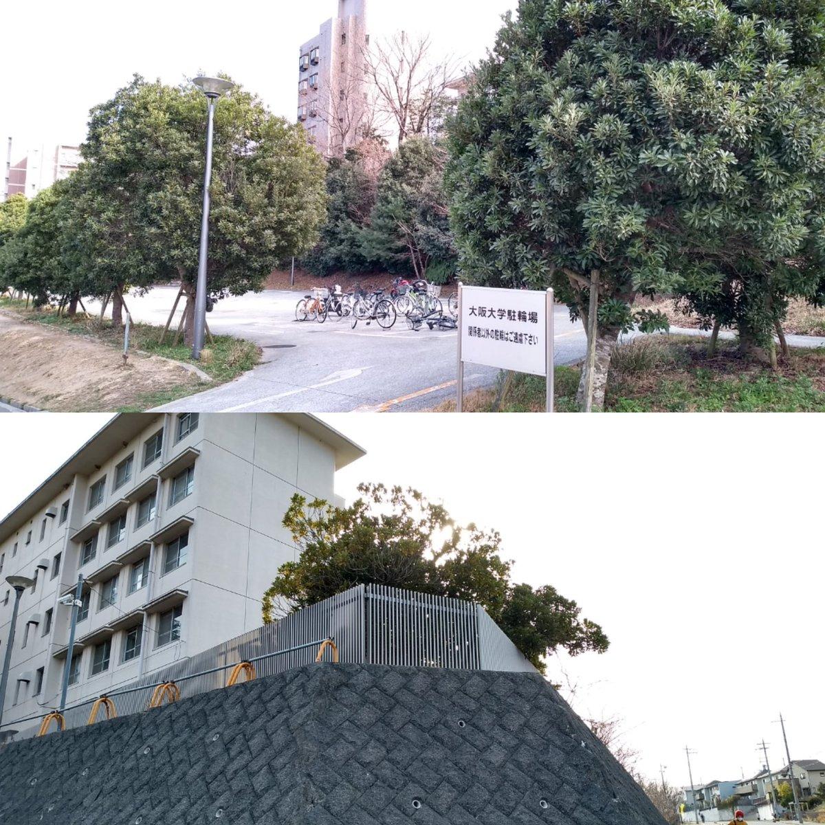 大学 大阪 外国 語 大阪大学外国語学部という選択肢 シンノスケ note