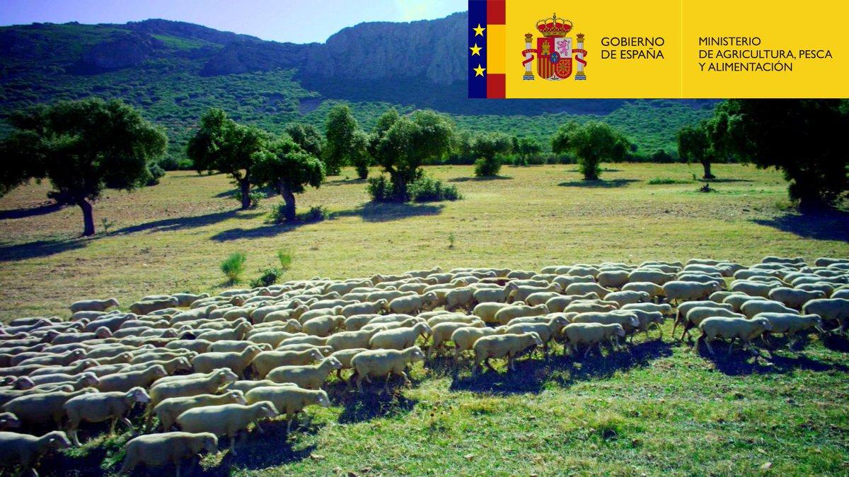 Foto cedida por Ministerio de Agricultura
