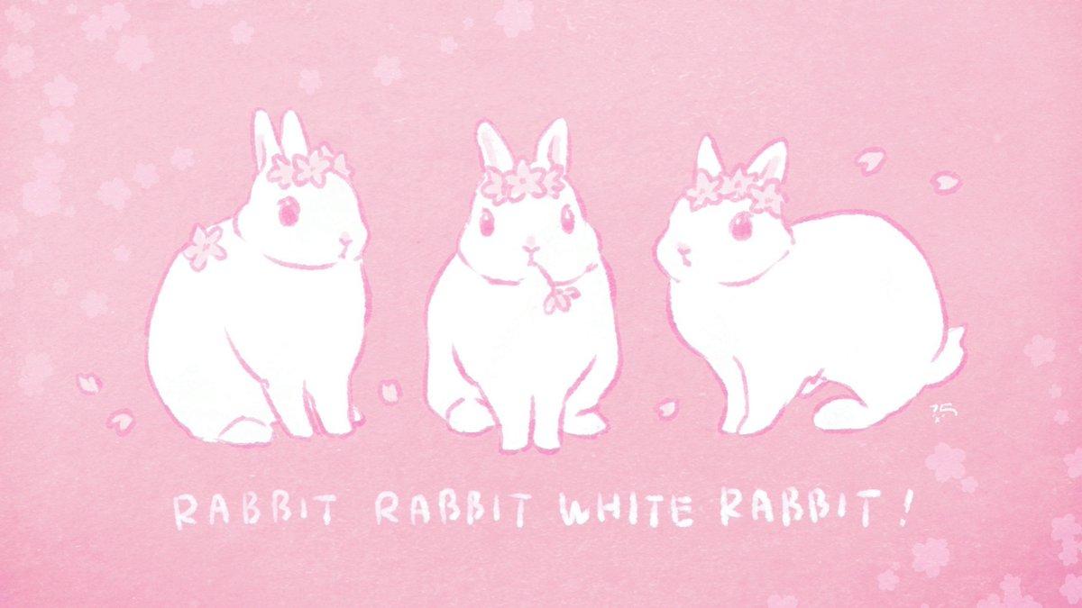 @taiga15's photo on Rabbit Rabbit