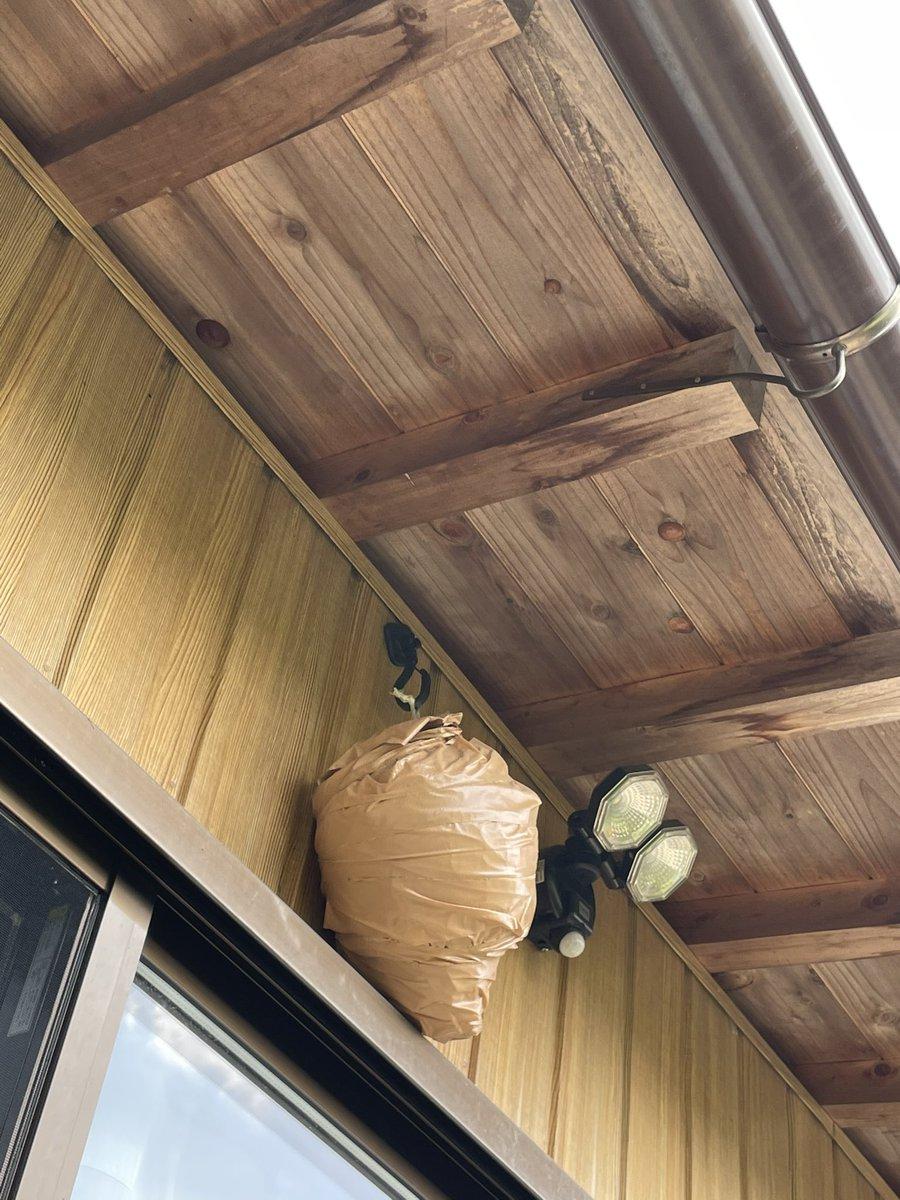 新規の蜂を寄せ付けない方法がこちら!ダミーの蜂の巣を作ることで人にも蜂にも優しいんです!