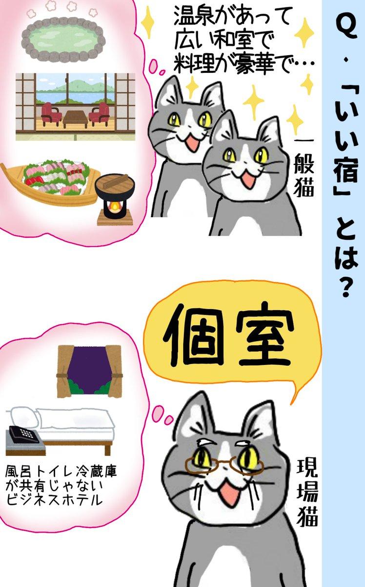 現場猫目線の「いい宿」 #現場猫