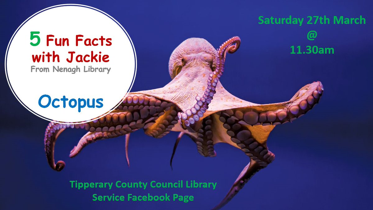 """TippCoCoLibraries on Twitter: """"Join Jackie from #Nenagh Library as she goes  on a Deep Sea Dive to the bottom of the Ocean to find out 5 Fun Facts about  The Octopus. 🐙Saturday"""
