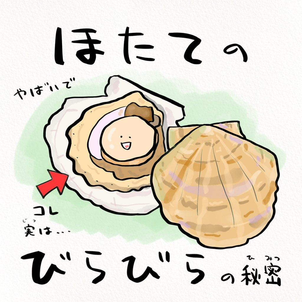 意外な事実が発覚!?北海道民の皆さんも知らないホタテの話!