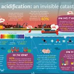 Image for the Tweet beginning: What is ocean acidification and