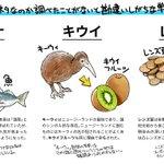 どっちが由来か勘違いしがちな単語!魚は肴の方が語源だって知ってた??