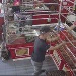 強盗が押し入った際の仮想訓練中に?店内で爆睡する番犬の様子!