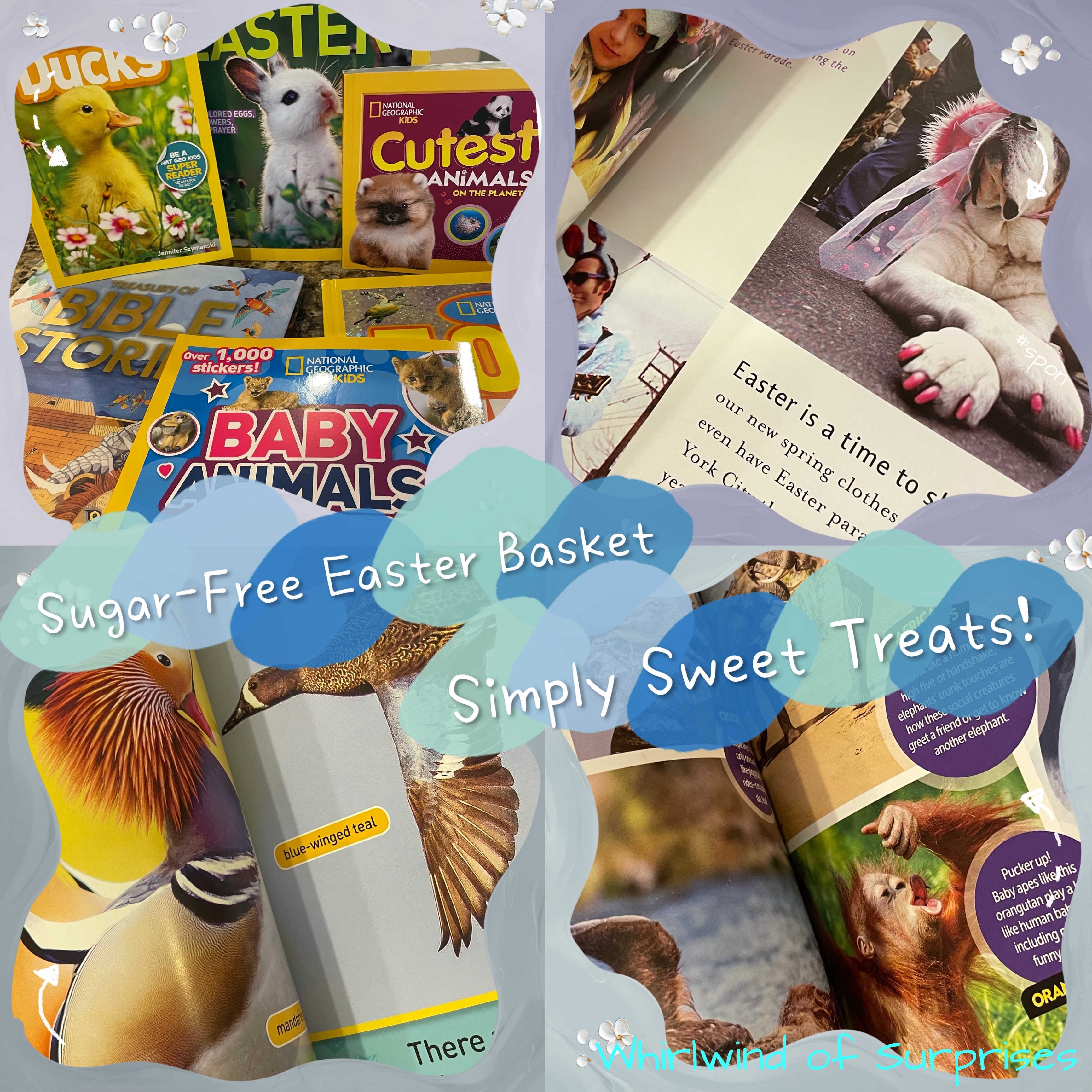 Sweet and Healthy National Geographic Easter Gift Basket Review and Giveaway