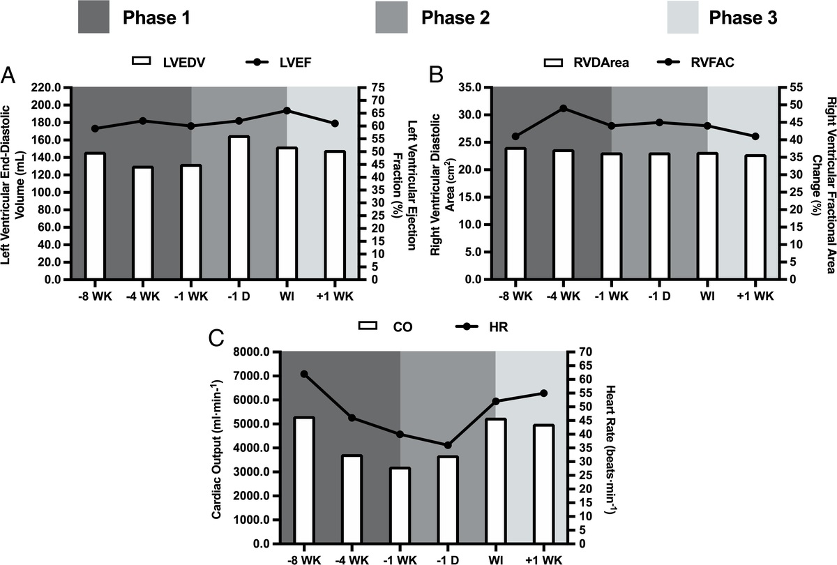 This recent study aimed to evaluate the effects of low energy availability on health and performance indices associated with the Male Athlete Triad and Relative Energy Deficiency in Sport models. https://t.co/BcI8yn9b9u https://t.co/uqhTkD5C6C