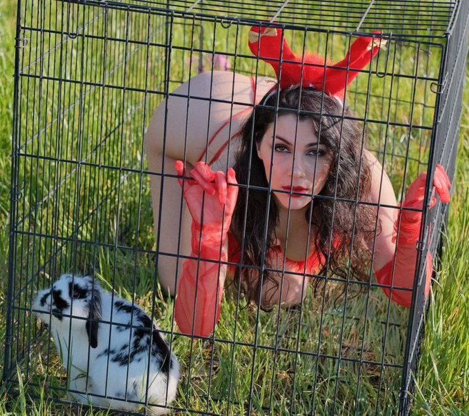 Don't keep bunnies in cages! https://t.co/OvoXMpju8v