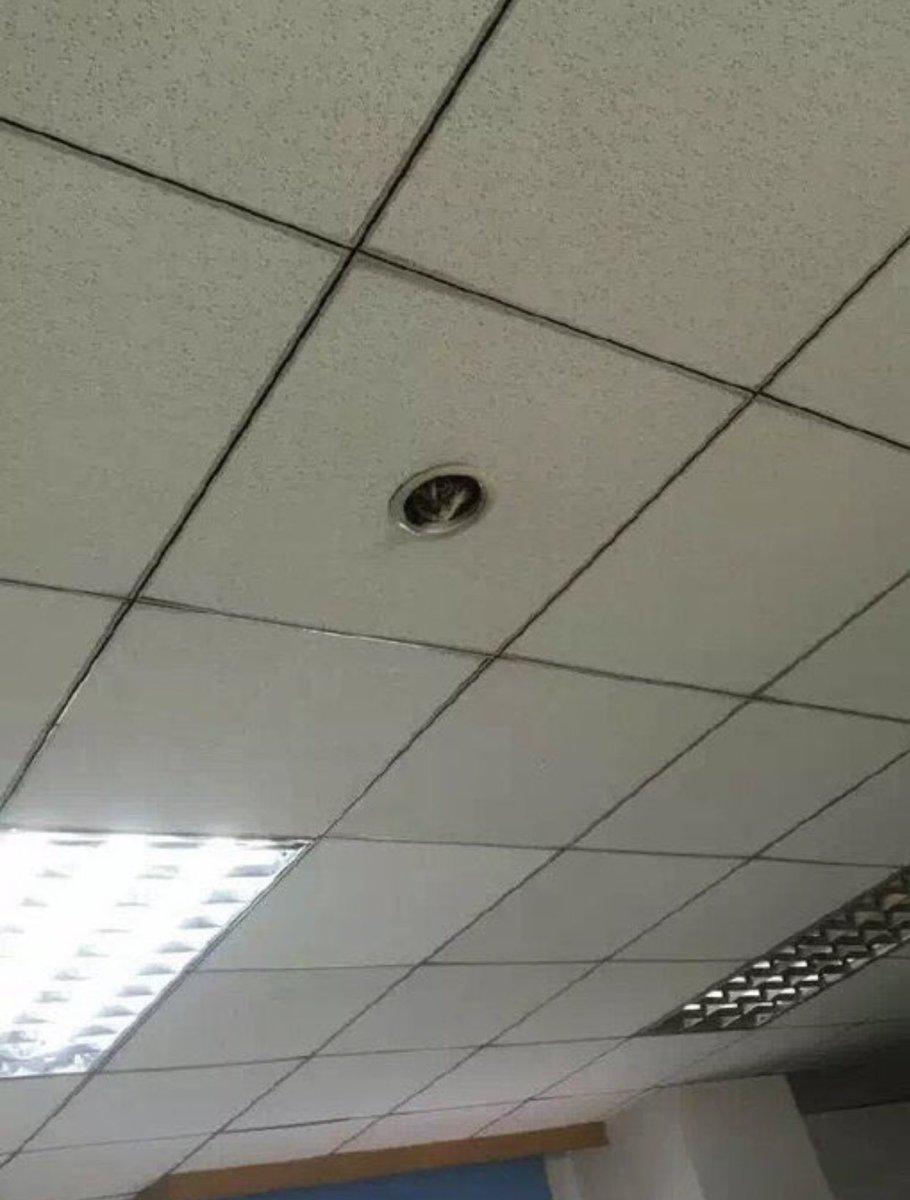 これが会社に導入された最新型監視カメラ!?可愛すぎて仕事にならないw