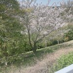 roIGaXup4t7NbkEのサムネイル画像