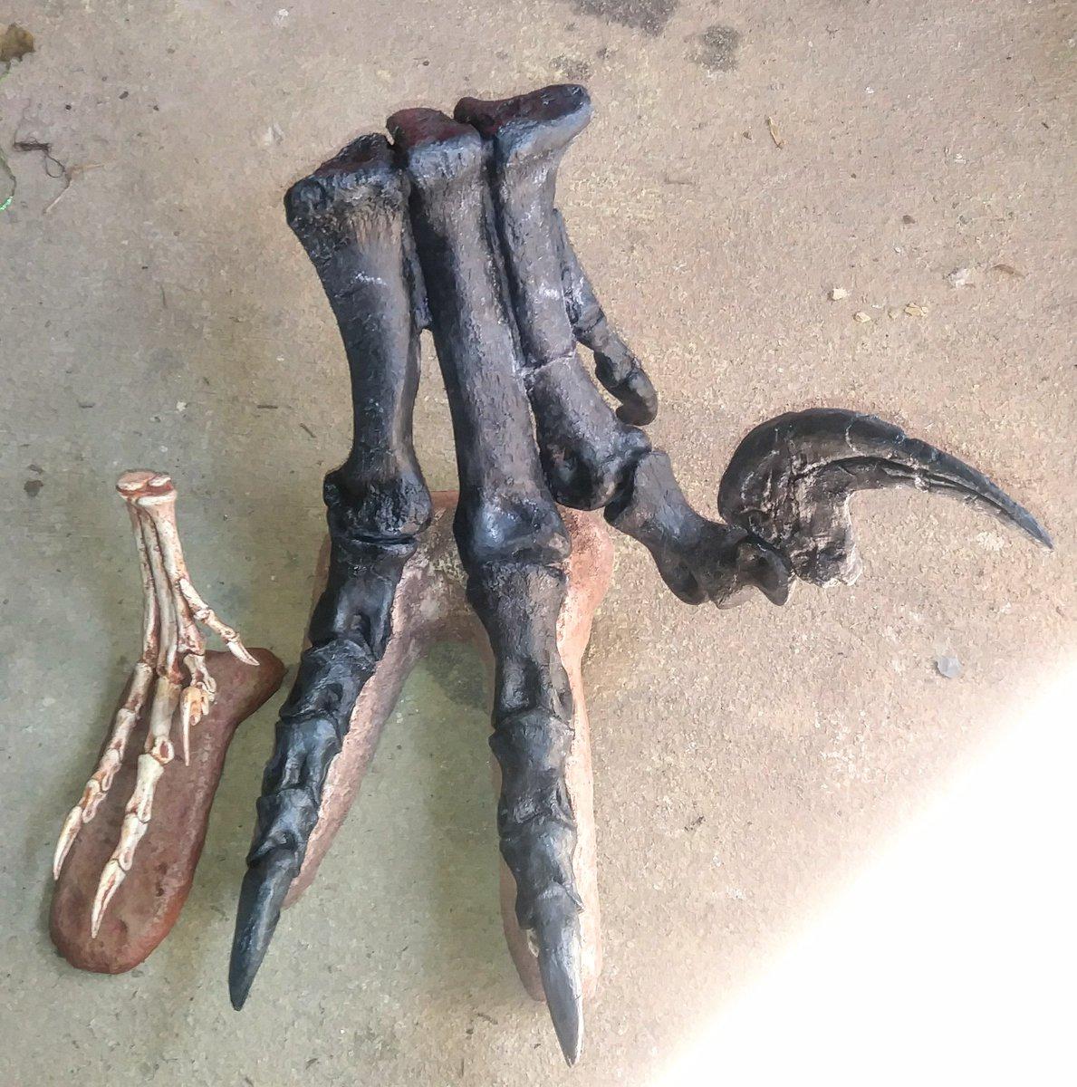 RT @PaleoCameron: Velociraptor mongoliensis foot (left) beside a Utahraptor ostrommaysi foot (right). Whoa right? https://t.co/2tTxPwgZMn