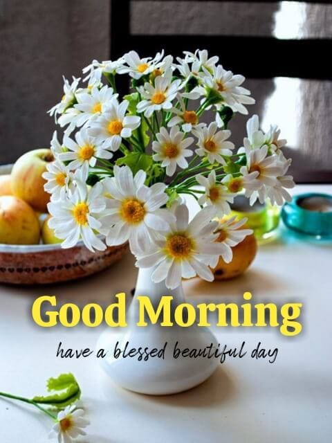 """GM @SrBachchan Boss Thought for 2day """"Take risks in life. If you succeed, you can lead! If you loose, you can guide"""" Have a blessed beautiful day 💐💕🌹💕 Love & Regards ~ प्रवीण आहूजा (नॉएडा)"""
