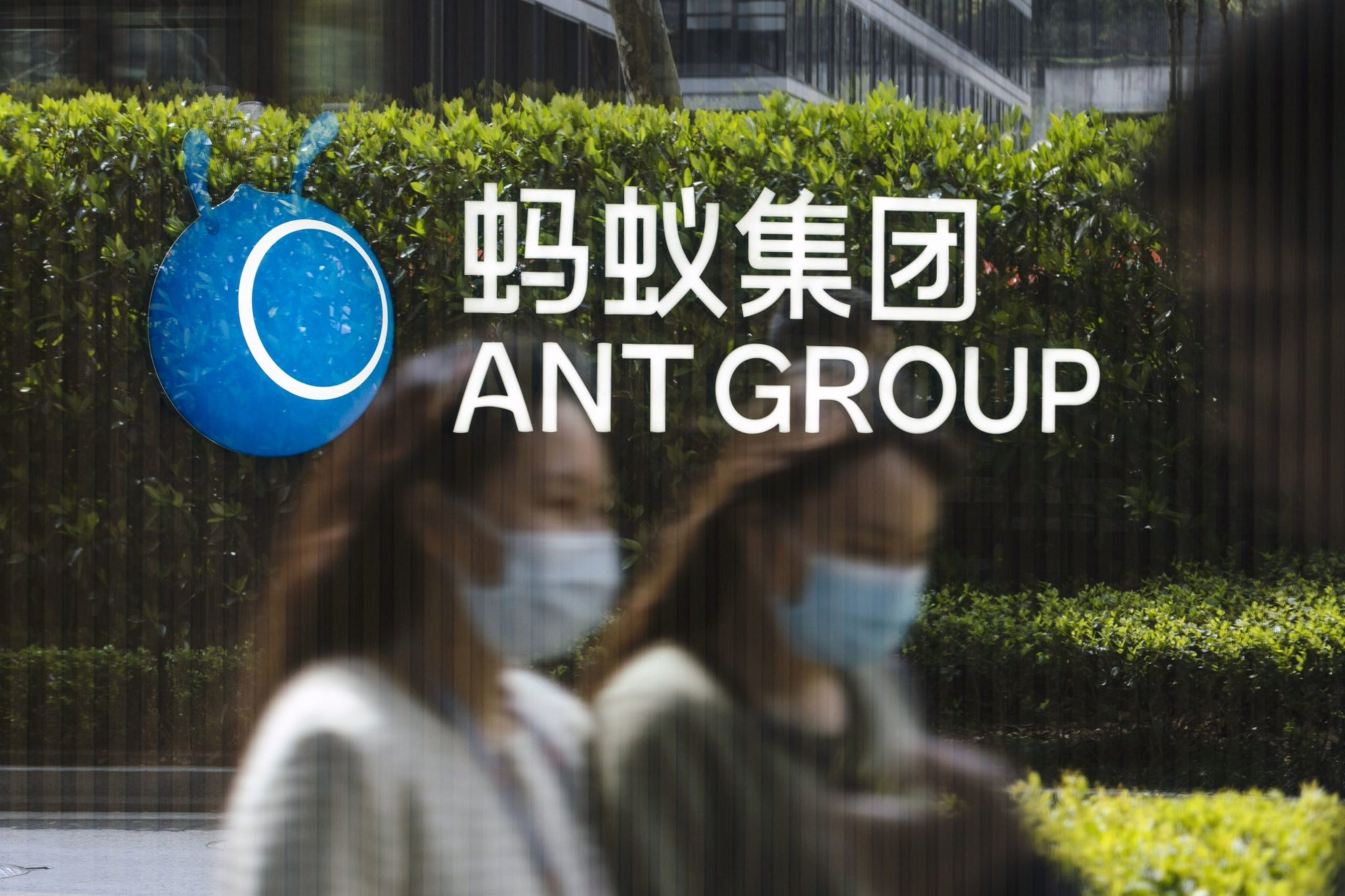 Ant to Be Financial Holding Firm in Overhaul Forced by China Photo