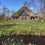 Image for the Tweet beginning: お花のお家。やっと見つけた。まだ満開には早いから4月末にもう一度行ってみよう。 #burgerbrug #オランダ #お花のお家