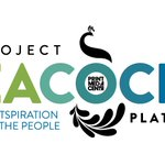 Image for the Tweet beginning: Project Peacock Launches a New