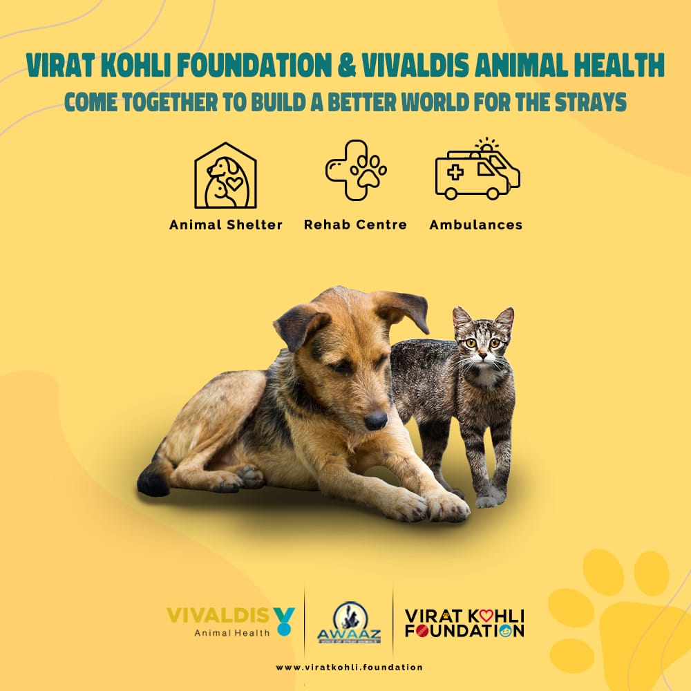 Today, on World Stray Animals Day, we are announcing our collaboration with leading animal healthcare company #VivaldisAnimalHealth & @AwaazStray, NGO supporting stray animals, we've come together to build safe spaces & ensure easy medical access to the stray animals of our city. https://t.co/2QdckE52Fd